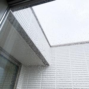 なぜか片方の窓だけ汚い。。。5分でササっと窓掃除!