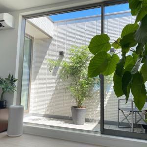 【窓だらけLDK】明るいけど、直射日光は遮りたい!