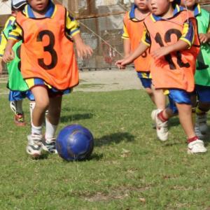 初めてのサッカースクールの選び方~スクールとチームの違い~