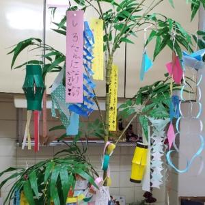 教室の七夕飾り