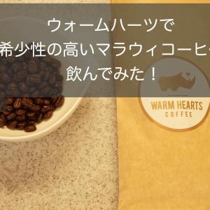 マラウィコーヒーが飲めるウォームハーツを試してみた!希少度高い!