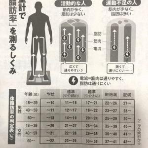 体脂肪率。