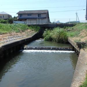 8/16釣行記。猛暑続きの霞ヶ浦水系。