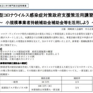 withコロナ、afterコロナの補助金の申請書、どう書けばいいのよ~!