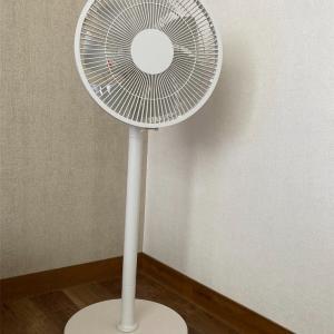 清水買い?!無印良品のDC扇風機を購入。