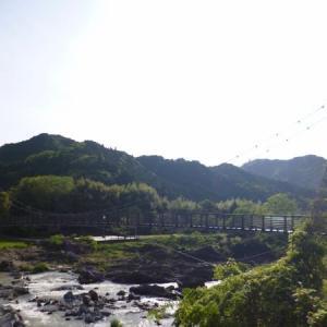 丹波竜(兵庫・丹波市)