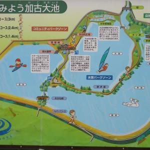 加古大池(兵庫・稲美町)