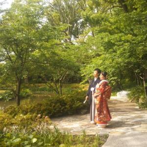 鎌倉鶴ヶ丘八幡宮