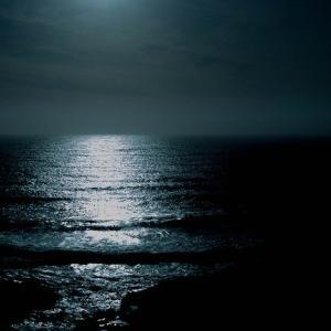 夜は美しい。