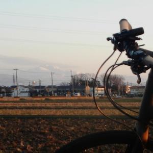 良い天気すぎてたまらず自転車に乗りました