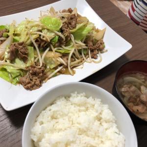 29日 彼ごはん/半額惣菜/過食