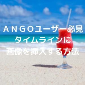 SANGOユーザー必見!タイムラインに画像を挿入する方法