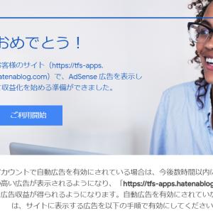 ドメインを取得したら Google AdSense の審査に落ちました。その時の対策を紹介します。