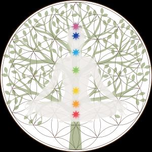 フラワーオブライフ+チャクラ+生命の樹