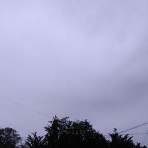 雨の屋久島