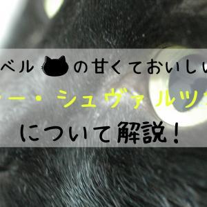 黒猫ワイン「シュヴァルツカッツ」とはどんなワイン?その由来や特徴について解説