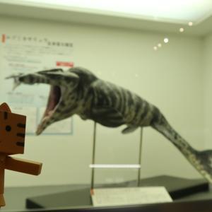 三笠市 三笠市立博物館(屋内展示)