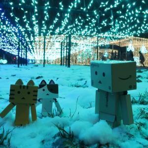 札幌市 大通公園に輝くホワイトイルミネーション