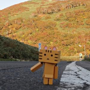 共和町 日本百名道のニセコパノラマラインの一角から