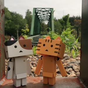 幌加内町 自然のなかに静かに佇む深名線第三雨竜川橋梁