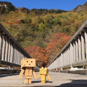 上川町 自然のなかの秋の層雲峡園地
