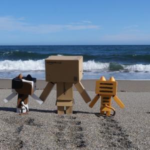 豊浦町 大岸シーサイドキャンプ場の砂浜にて