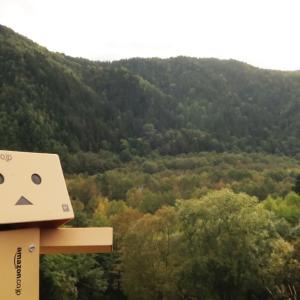 上川町 三国峠方面へと分岐する道にて