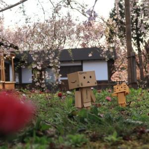 松前町 江戸の香ただよう松前藩屋敷
