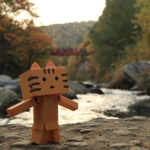 札幌市 秋色の定山渓の二見公園付近での河童巡り