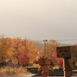 芦別市 道の駅そばにある、秋の憩いの広場にて