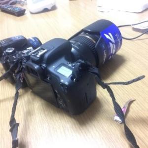 新しく機材を導入! Canon 8000D+レンズ で1ヶ月写真を撮った感想