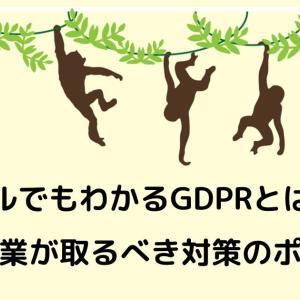 サルでもわかるGDPRとは?日本企業が取るべき対策のポイント