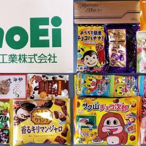 【2021年10月末権利から優待変更に!】正栄食品工業(8079)の到着した株主優待品を紹介!10月末権利のお菓子は大量のチョコレートなど!