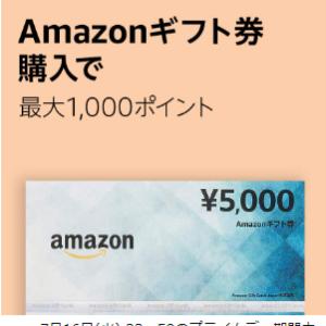 Amazonギフト券5000円購入で最大1000ポイント貰える!【Prime会員限定プライムデー7月16日23:59まで】