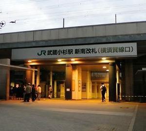 冠水しちゃった横須賀線武蔵小杉駅を見てきた話