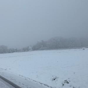 平成最後の雪