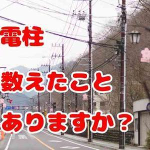【電柱vs街灯vs植木でバトル勃発💥】電気工事士が「電柱多くね⁉️」からの電柱を数えてみたら、驚きの結果が⁉️  in 仙台
