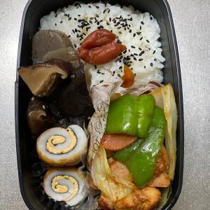 鶏肉で回鍋肉(*^▽^*)