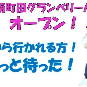 【宿泊旅行情報サイト】[Japan travel site]霧島神宮の御神木の枝に神様が立っていた