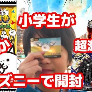 【宿泊旅行情報サイト】[Japan travel site]【にゃんこ大戦争カードウエハース】10パックをディズニーシーで開封していく