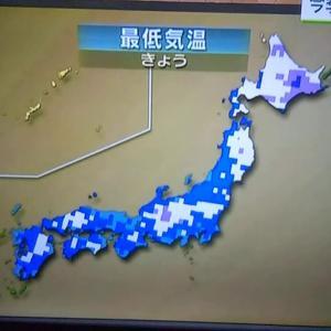 【宿泊旅行情報サイト】[Japan travel site]雲海に浮かぶ備中松山城