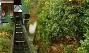 【宿泊旅行情報サイト】[Japan travel site]祖谷温泉のケーブルカー