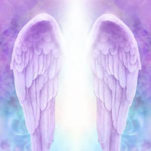 天使のゆりかご〜〜許しが起こるとき