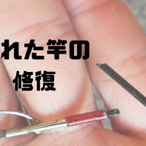 【簡単・安価】折れた釣り竿の先端を修理して治す方法