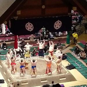 大相撲、とても面白かったです(∩´∀`∩)