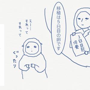 日記/D13 3日目胚を培養