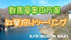群馬県奥四万湖へ紅葉狩りツーリング【モトブログ】
