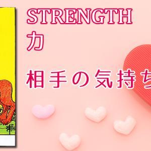 8.STRENGTH/力のタロットカード【相手の気持ち】