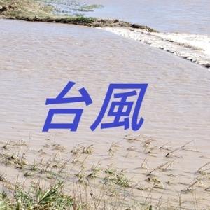 台風19号の被害は⁉