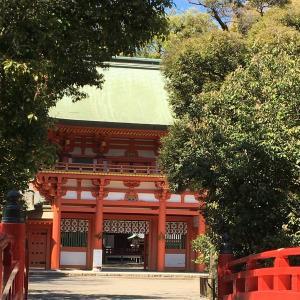 ⛩大宮氷川神社のおみくじ